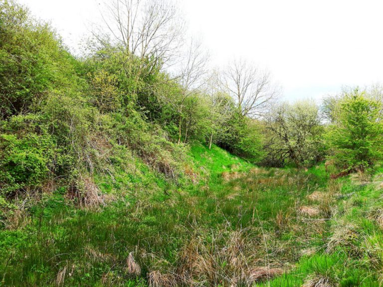 Ditch and outer Rampart, Liddel's Strength