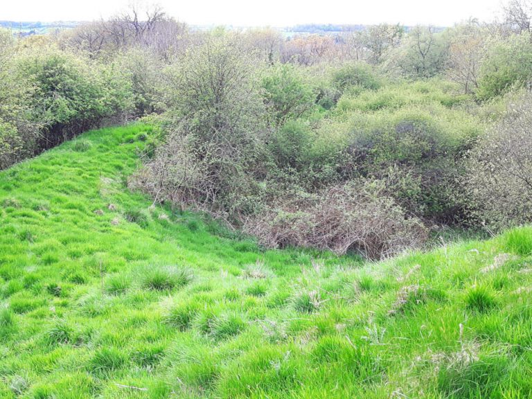 View of inner rampart and ditch from the motte